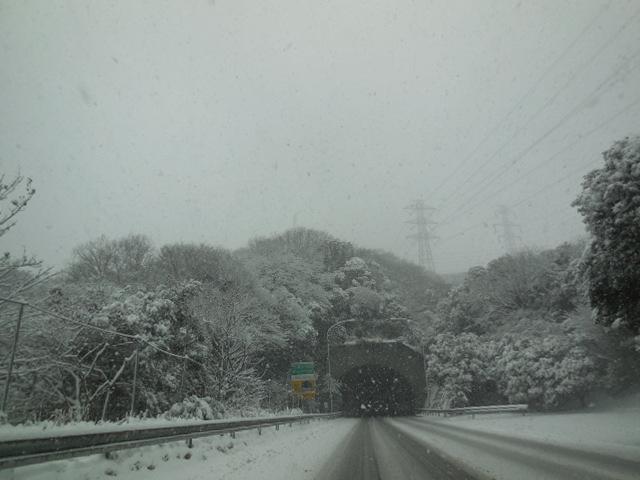雪は、降る!